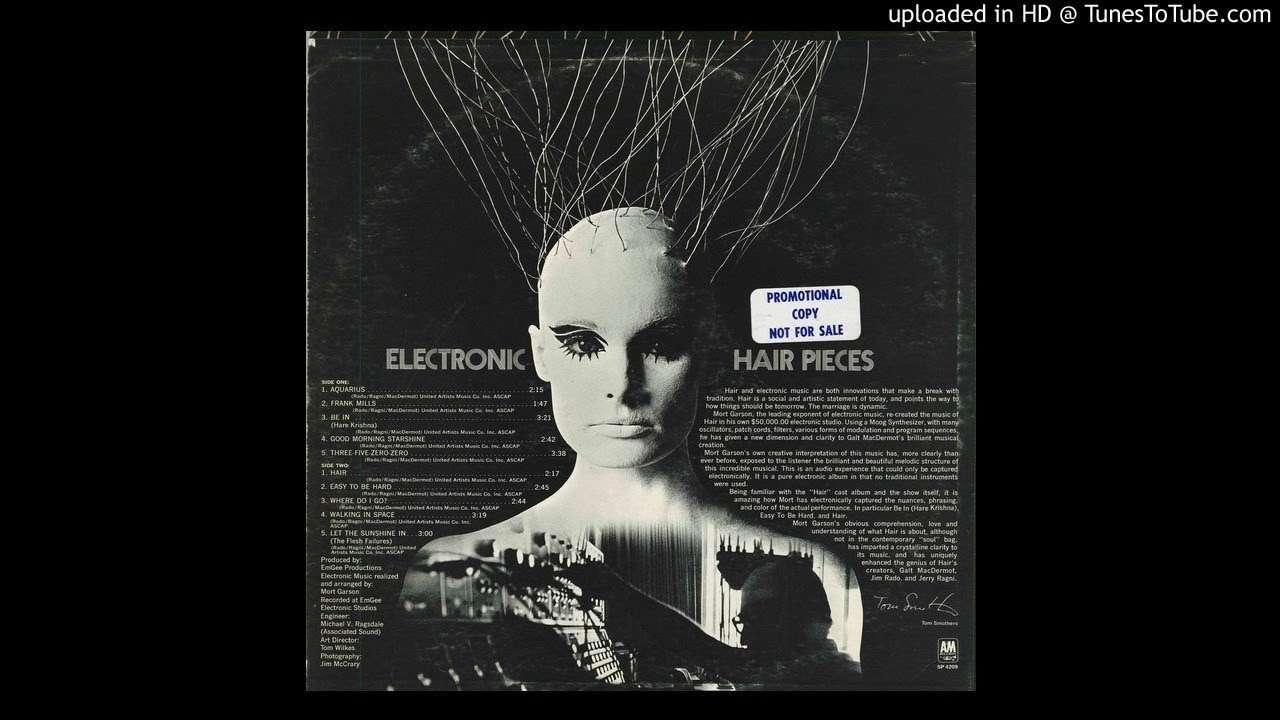 Dj Spinnas Guide To Moog Vinyl Integrated Circuit4558d Ic Circuitintegrated Circuits Mort Garson Walking In Space